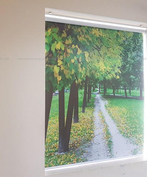Lựa chọn rèm cuốn in tranh đẹp cho văn phòng Cầu Giấy, Hà Nội RT40