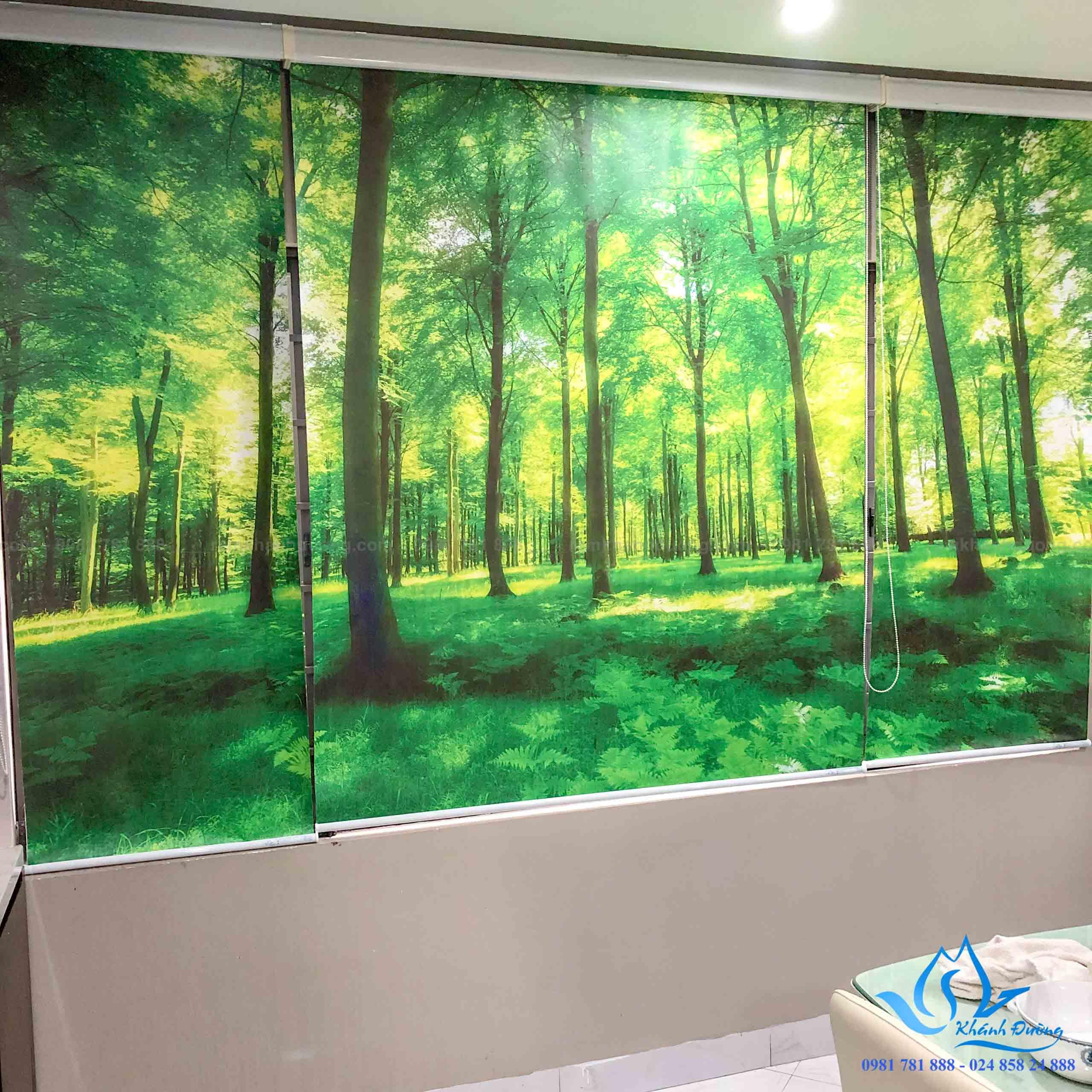 Hàng cây sống động hiện ra trước mắt thông qua bộ rèm cuốn tranh PC-102